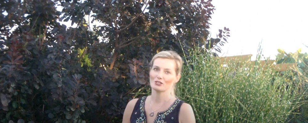 Z Teatrem Muzycznym na kwarantannie - Anna Barska